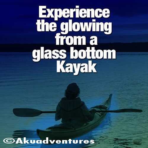 Akuadventures Kayaking