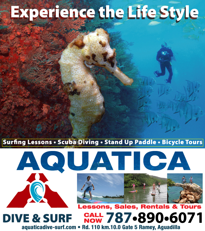 Aquatica Dive, Bike & Surf Adventures