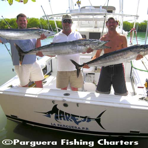 Parguera Fishing Charters