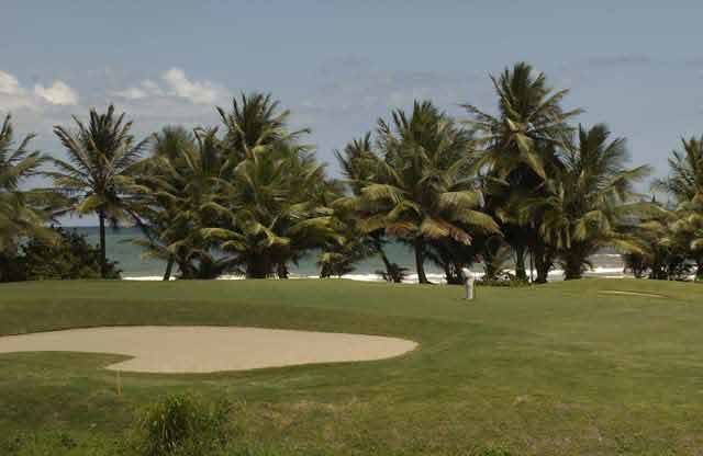 Palmas del Mar Palm Course