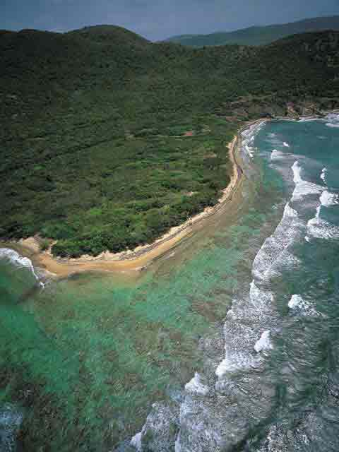 Punta Vaca