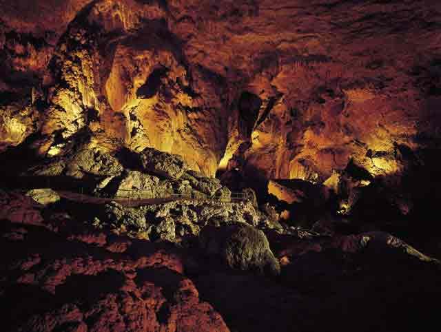 Parque Cavernas del Rio Camuy