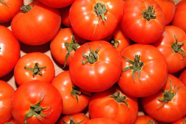 El Festival del Pueblo del Tomate