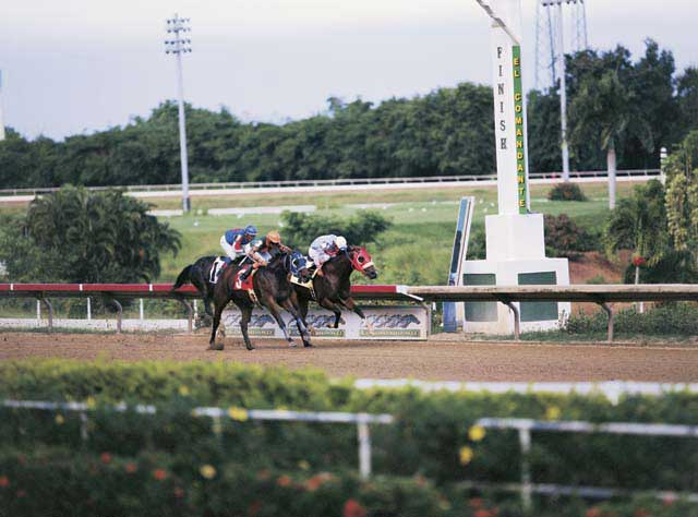 Hipodromo Camarero