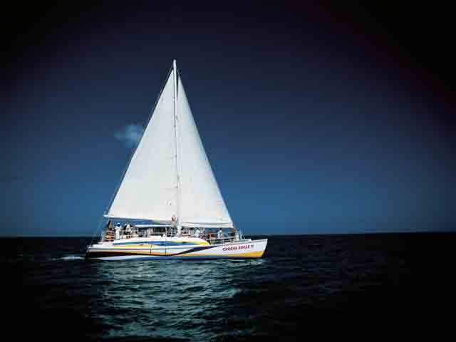 Catamaran Spread Eagle